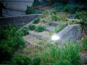 steps of ipponbashi