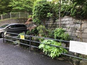 竹ケ花雷電湧水近くから眺める 2021年5月2日撮影