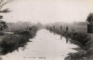 排水川の釣り